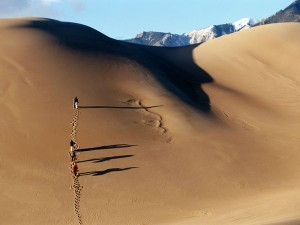 sandboarders-great-sand-dunes-national-park_37705_600x450